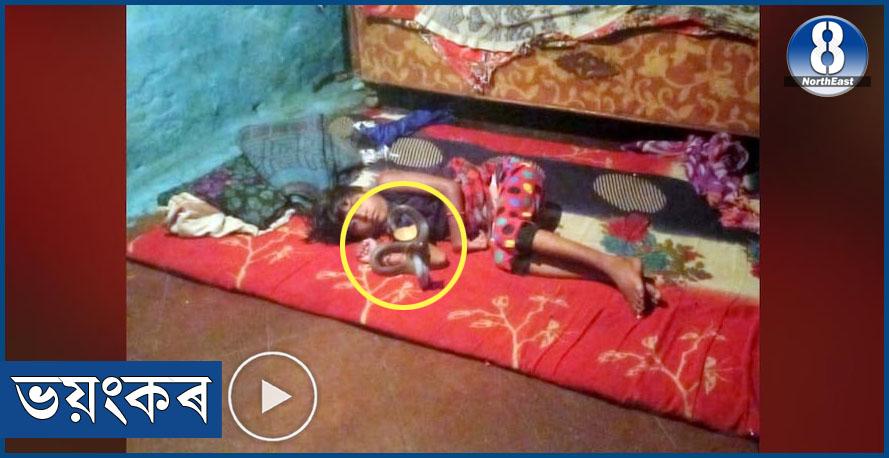 শিহৰণকাৰী! শুই থকা অৱস্থাতে এগৰাকী কণমানিক ডিঙিত মেৰিয়াই ধৰিলে বিষাক্ত ফেঁটীসাপে…